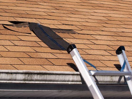 Repairing a roof in Sydney's Inner West